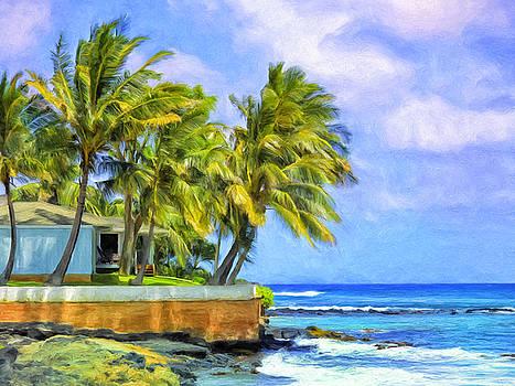 Dominic Piperata - Oceanfront Hale