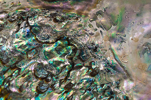 Oceanic Eruption by Joy Gerow