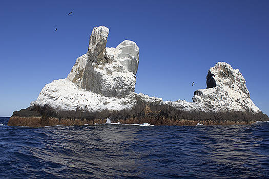 Oceanic Roca by David Valencia