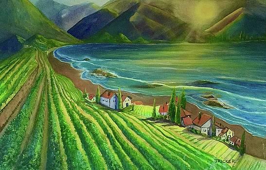 Sunset Vineyard  by Jane Ricker