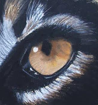 Ocelot Eye by Jessica Kale