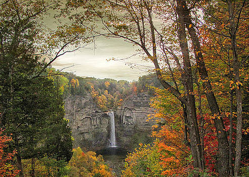 Jessica Jenney - October at Taughannock
