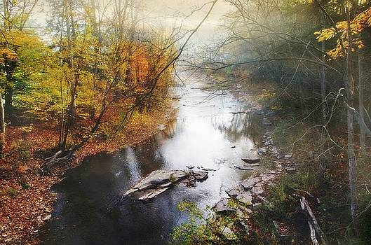 October Day's on Larry's Creek by Stephanie Calhoun