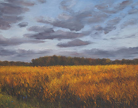 October Evening Fields by Erica Keener