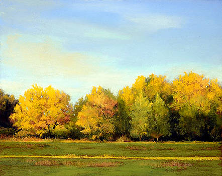 October Light by Xenia Sease