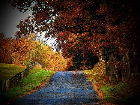 October Road by Joyce Kimble Smith