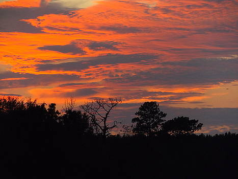 October Sky by Julie Pappas