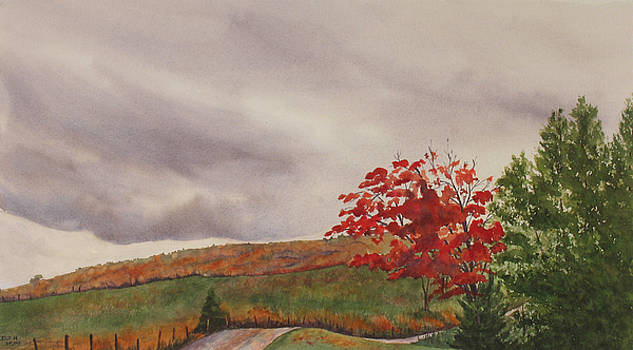 October Wind by Debbie Homewood