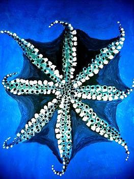 Octopus by Elena Buftea