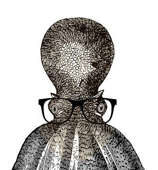 Octopus Head by Frank Tschakert