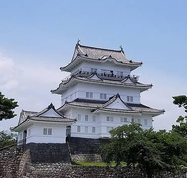 Odawara Castle by Constance DRESCHER