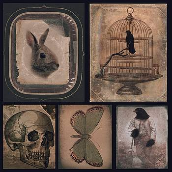 Gothicrow Images - Odd Grouping