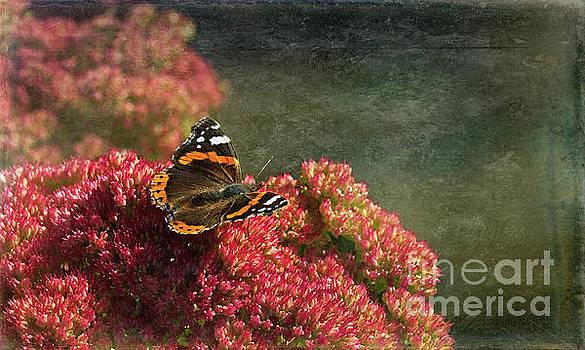 Ode to Autumn by Liz Alderdice