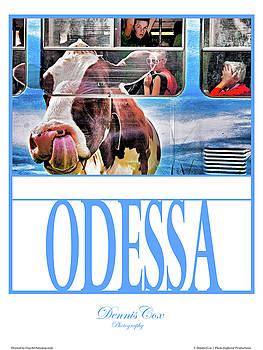 Dennis Cox Photo Explorer - Odessa Travel Poster