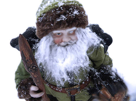 Odin in Snow 2 by Sabrina Zbasnik