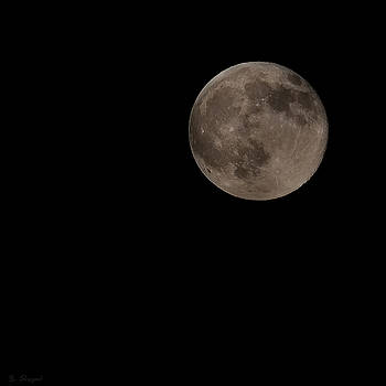 Off Center Moon by Brian Shepard