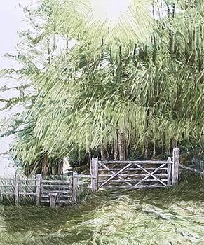 Offa's Dyke Path at Clwyd Gate by Alwyn Dempster Jones
