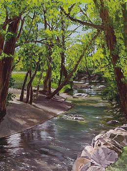 Ogden River Parkway by Dan Price