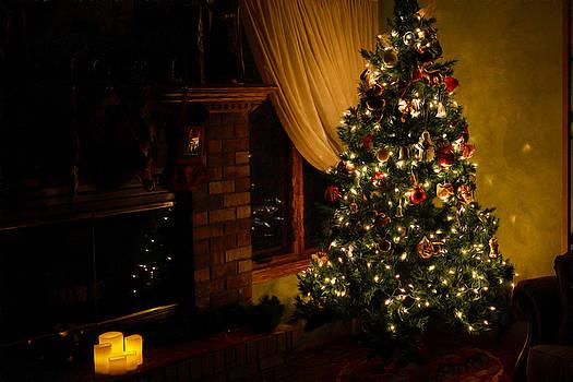 Oh, Christmas Tree... by Stephen Schwiesow