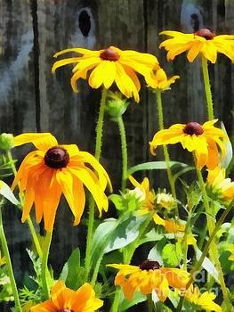 Oh Sunny Day by Helene Guertin