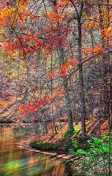 Ohio Country Roads - Peaceful Waters - Lake Loretta at Alley Park, Lancaster Fairfield County by Michael Mazaika
