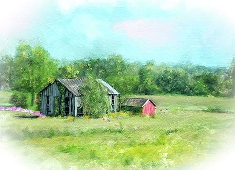 Ohio Rustic Barns by Mary Timman
