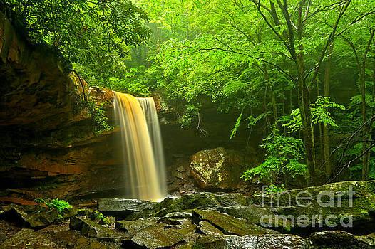 Adam Jewell - Ohiopyle Cucumber Falls Canyon