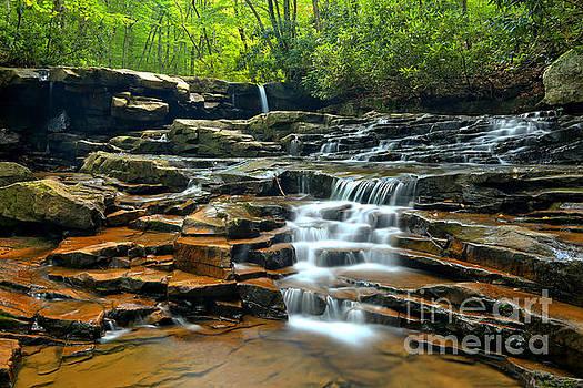 Adam Jewell - Ohiopyle Waterfall Cascade