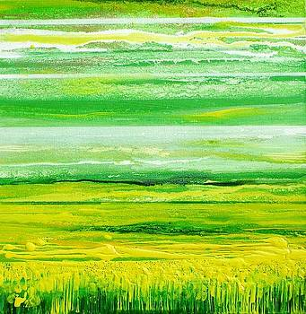 Oil seed rape series Northumberland by Mike   Bell