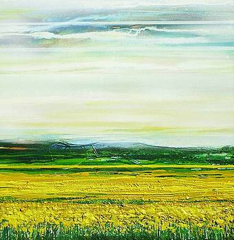 Oil seed Rape Tyndale no3 by Mike   Bell