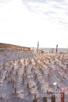Okaloosa Island Beach by Robin Maria Pedrero