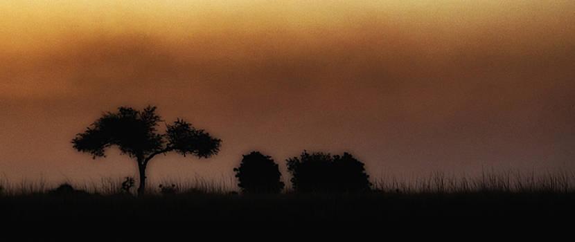 Okavango Sunset by Claudio Bacinello