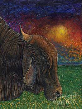 Okeechobee Brahman by David Joyner