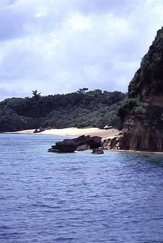 Okinawa Beach 10 by Curtis J Neeley Jr