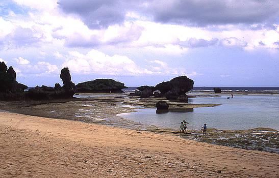 Okinawa Beach 18 by Curtis J Neeley Jr