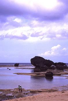 Okinawa Beach 20 by Curtis J Neeley Jr