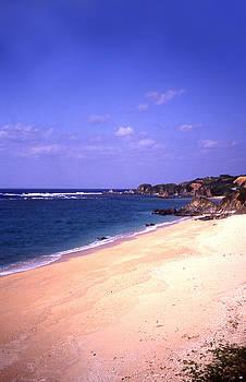 Okinawa Beach 22 by Curtis J Neeley Jr