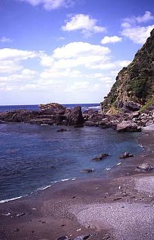 Okinawa Beach 5 by Curtis J Neeley Jr