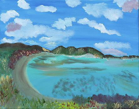 Okinowa Beach Reflections by Meryl Goudey