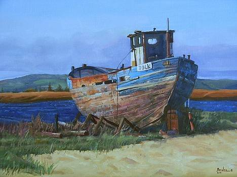 Old Abandoned Boat by Noe Peralez