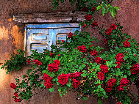 Old Adobe with Roses by Paul Cutright