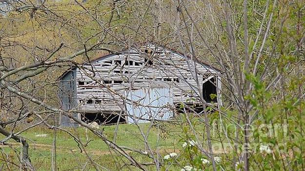 Old and Abandoned Barn by Charlotte Gray