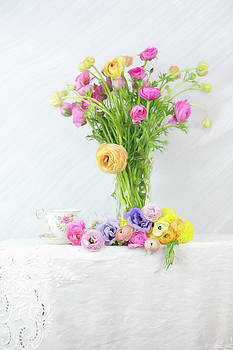 Old and New Ranunculus by Susan Gary