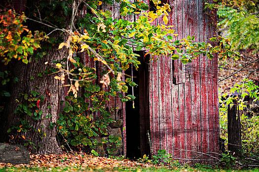 Old Barn 7 by Scott Fracasso