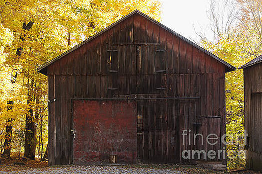 Old Barn by Denise Woldring