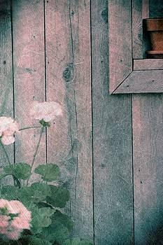Sophie Vigneault - Old Barn Details