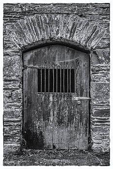 Andrew Wilson - Old Barn Door