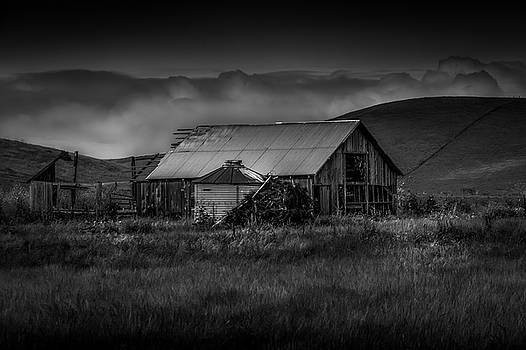 Old Barn Dump by Bruce Bottomley