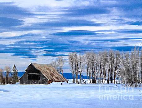 Old Barn in Fort Klamath by Irina Hays