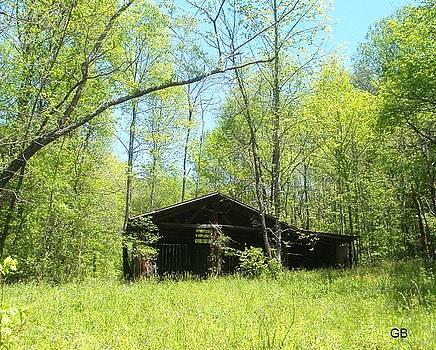 Old Barn in Springtime by Glenda Barrett